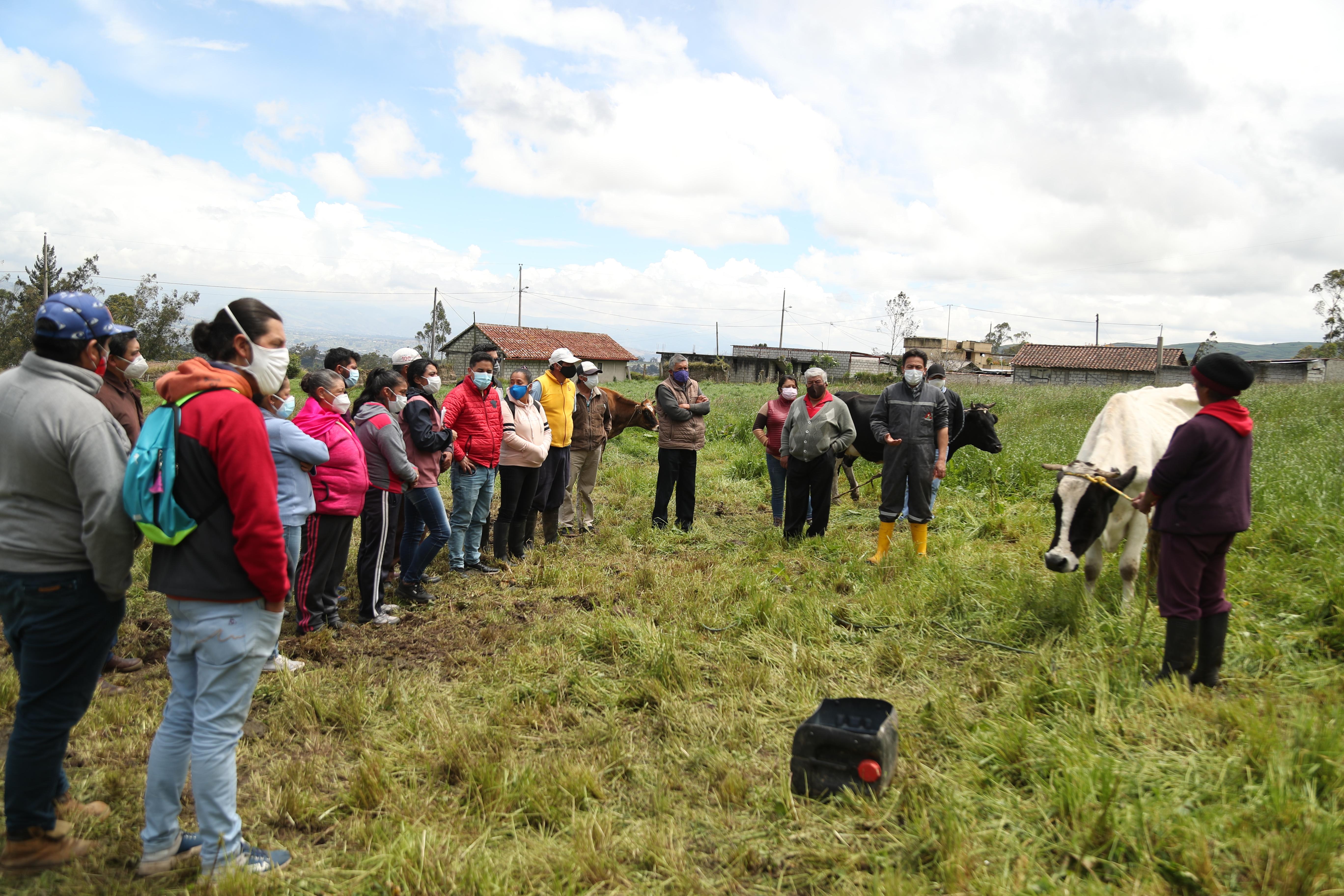 Ganaderos de la parroquia Marcos Espinel se capacitaron sobre reproducción bovina